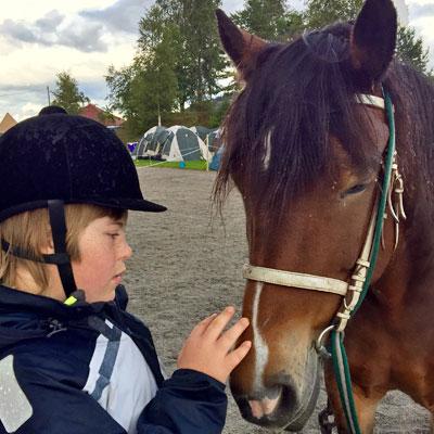 hestevenn2